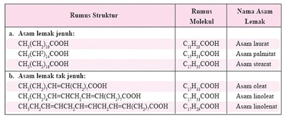 Asam lemak tak jenuh (unsaturated fatty acid)